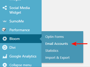 how-to-create-an-inline-email-optin-form-with-bloom-1