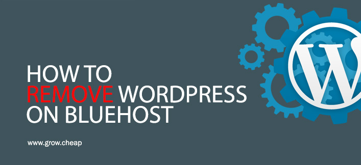 How To Remove WordPress on BlueHost?
